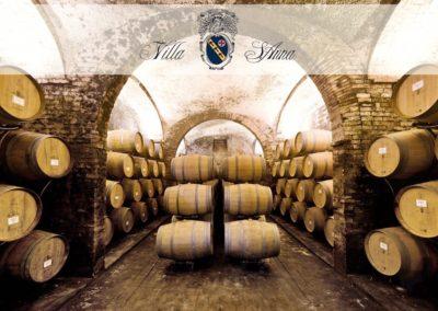E-Bike Wine Villa Sant'Anna Montepulciano