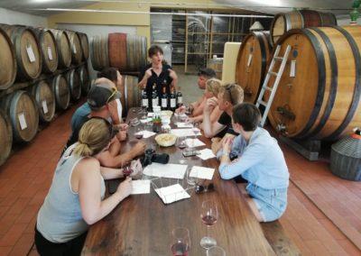 wine tour ebike experience boscarelli