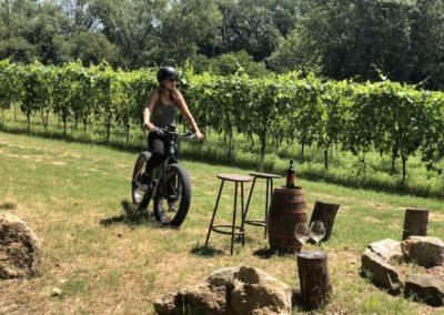 urban bikery wine tour ebike experience