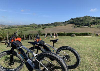 yoga in vineyard urban bikery ebikes