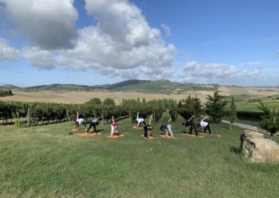 yoga in vineyard urban bikery montefollonico