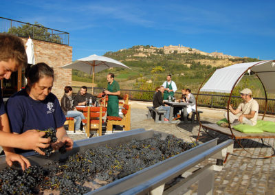 E-Bike Wine Salcheto Montepulciano