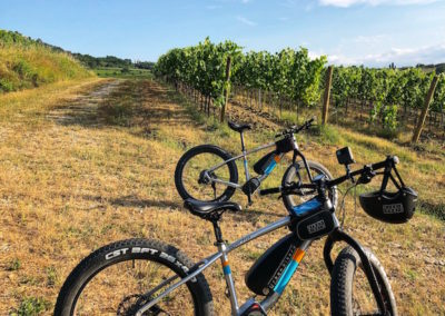 E-Bike Wine Canneto Montepulciano